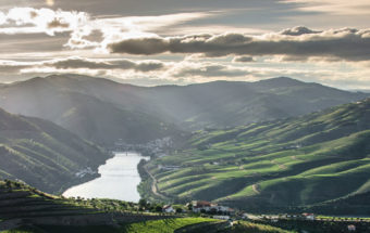 Vins Portugal